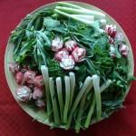 سبزی خوردن (4)