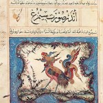 simorgh