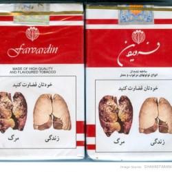 farvardin-cigarette-2