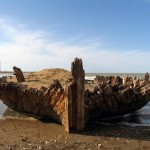 A Shipwreck in Miankaleh -     