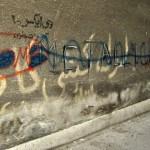 Walking in Tehran's Amirabad - پرسه در امیرآباد (24)