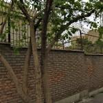 Walking in Tehran's Amirabad - پرسه در امیرآباد (39)