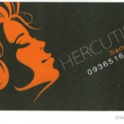Iranian Business Card (3)