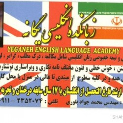 Iranian Business Card (6)