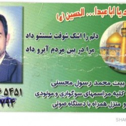 Iranian Business Card (10)
