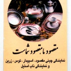Iranian Business Card (27)