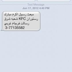 Iranian SMS Advertisements (20)
