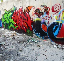 Graffiti on Tehran canal walls (8)