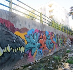 Graffiti on Tehran canal walls (17)