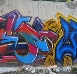 Graffiti on Tehran canal walls (39)