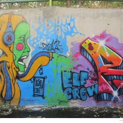 Graffiti on Tehran canal walls (51)