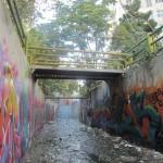 Graffiti on Tehran canal walls (53)