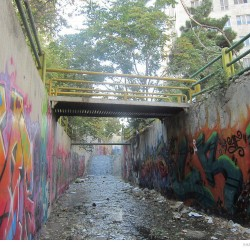Graffiti on Tehran canal walls (53)