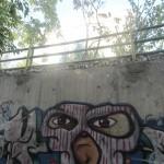Graffiti on Tehran canal walls (61)
