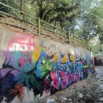 Graffiti on Tehran canal walls (65)