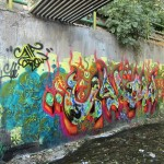 Graffiti on Tehran canal walls (70)