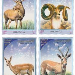Nowruz 2003