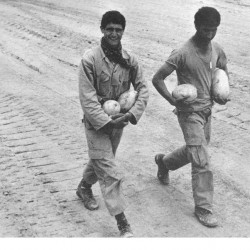 Daily Life at the Iran-Iraq War Fronts (21)