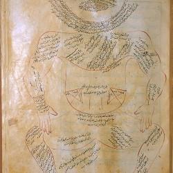 The Anatomy of the Human Body (1488), The muscle figure - تشريح بدن انسان (۱۴۸۸ میلادی)، نمای عضلات