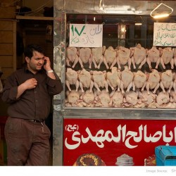 Poultry Shop, Molavi-Tehran