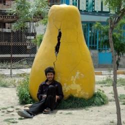 Boomehen, 2007