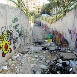 Graffiti on Tehran canal walls (3)