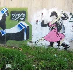 Graffiti on Tehran canal walls (15)