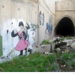 Graffiti on Tehran canal walls (23)