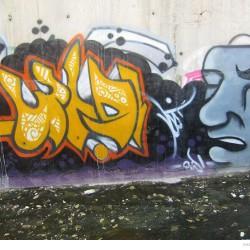 Graffiti on Tehran canal walls (25)