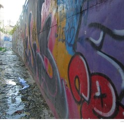 Graffiti on Tehran canal walls (30)