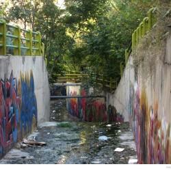 Graffiti on Tehran canal walls (32)