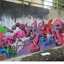 Graffiti on Tehran canal walls (40)