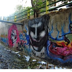 Graffiti on Tehran canal walls (48)