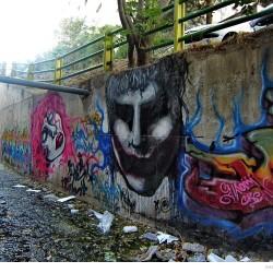 Graffiti on Tehran canal walls (48)