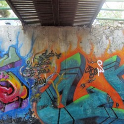 Graffiti on Tehran canal walls (49)