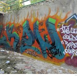 Graffiti on Tehran canal walls (52)