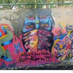 Graffiti on Tehran canal walls (55)