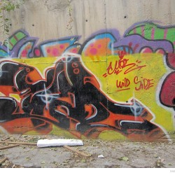 Graffiti on Tehran canal walls (58)