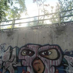 Graffiti on Tehran canal walls (61)