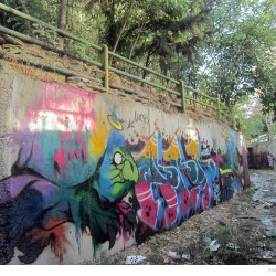 Graffiti on Tehran canal walls (65)