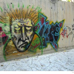 Graffiti on Tehran canal walls (75)