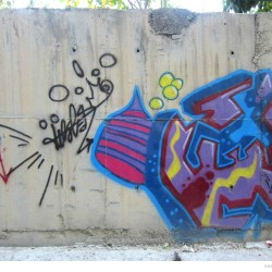 Graffiti on Tehran canal walls (76)