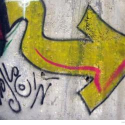 Graffiti on Tehran canal walls (79)
