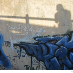 Graffiti on Tehran canal walls (81)