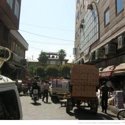 Molavi Avenue (6)