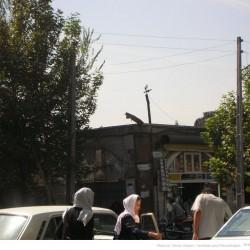 Molavi Avenue (11)