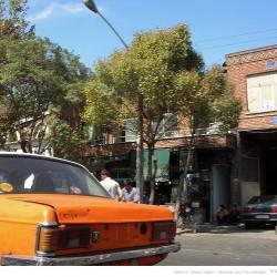 Molavi Avenue (24)
