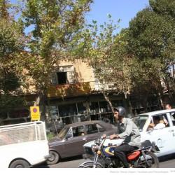 Molavi Avenue (25)