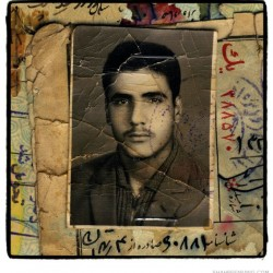 Iranian men, born in 1942 (87)