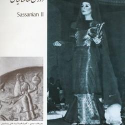 Women's Clothing in Iran (9)
